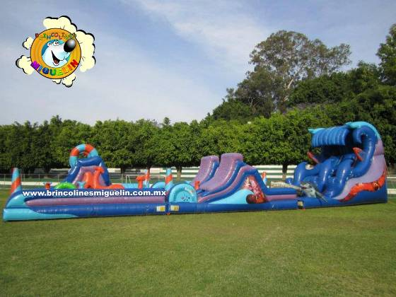 inflable Hawaii